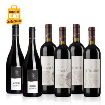Kit Vini Rossi Marchigiani Confezione da 6 Bottiglie - Acquisti di Gruppo GAS Sociali Commerce